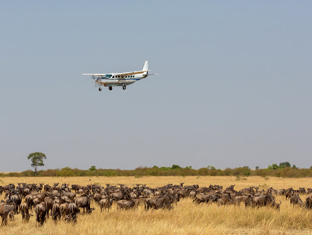 kenya holiday safari tours